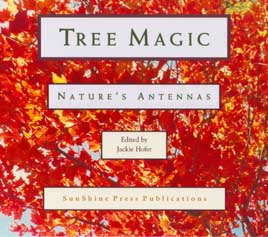 Tree Magic title page
